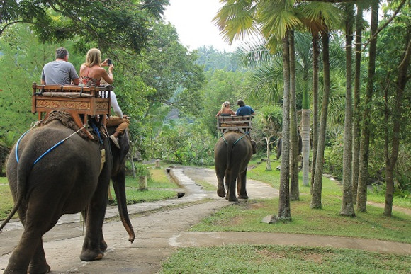 bali-elephant-riding-tour-bali-hello-travel-104