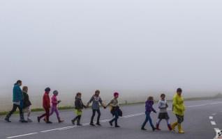 liikleja roolijoodik udu jalakäija jalakäijad