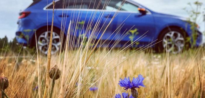 Autoostu ABC: 5 lihtsat soovitust, kuidas soetada taskukohane (unistuste) auto