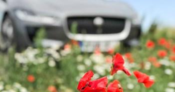 Soome LVK statistika: e-auto avariisse sattumise risk on kõrge, remont kallis