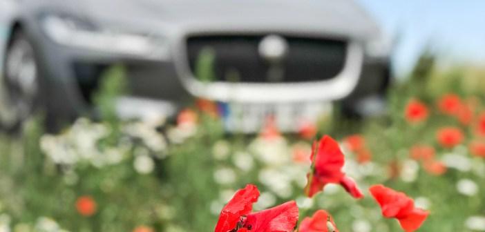 Suvesõidu ABC: kuus nippi kuidas auto kliimaseadet efektiivselt kasutada