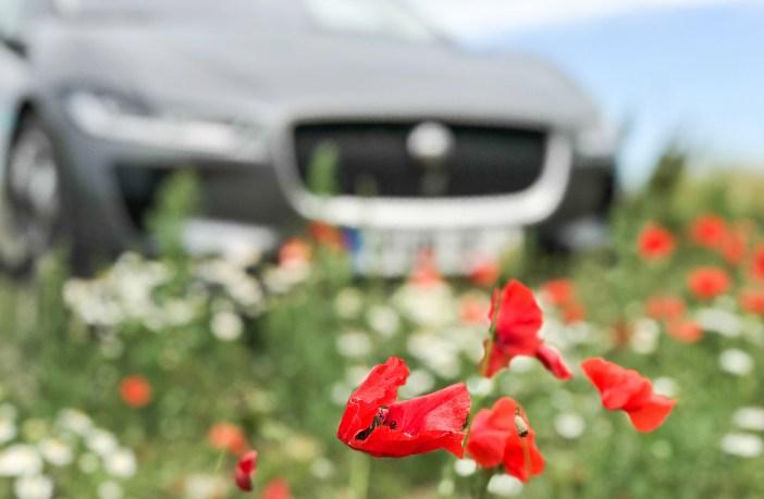 kliimaseade auto, remont kallis