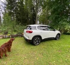 Ave esimesed triibulised Citroëni ja PHEV-iga