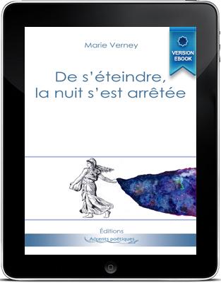 cover_pocket_ebook_de-s-eteindre