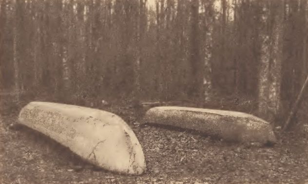 Dugout canoes in the Dismal swamp, Virginia.