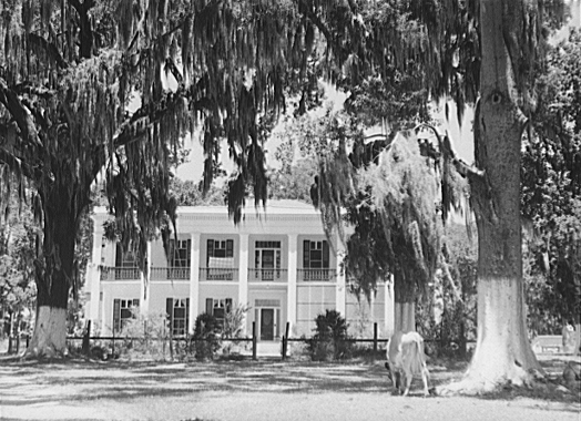 journal of residence on a georgia plantation essay Abstract: this paper analyzes female slave life in the context of female slave   further, this paper will examine  1961 journal of a residence on a georgian.