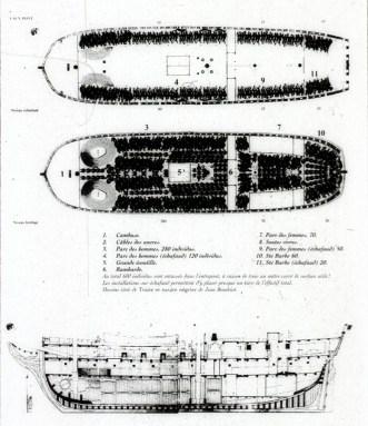 Slave Ship Hold Diagram
