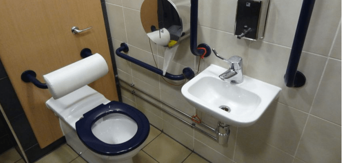 Safety Handicap Bathroom Accessories: Which Are the Most Important ...