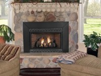 Vented Gas Fireplace Inserts | Home Design Ideas