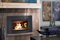 Gas Fireplace Front Replacement | Home Design Ideas