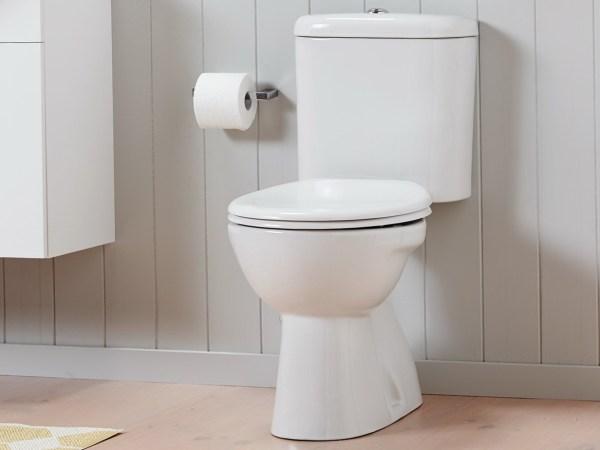 Fabulous 20 Porcher Toilet Seat Pictures And Ideas On Stem Education Lamtechconsult Wood Chair Design Ideas Lamtechconsultcom