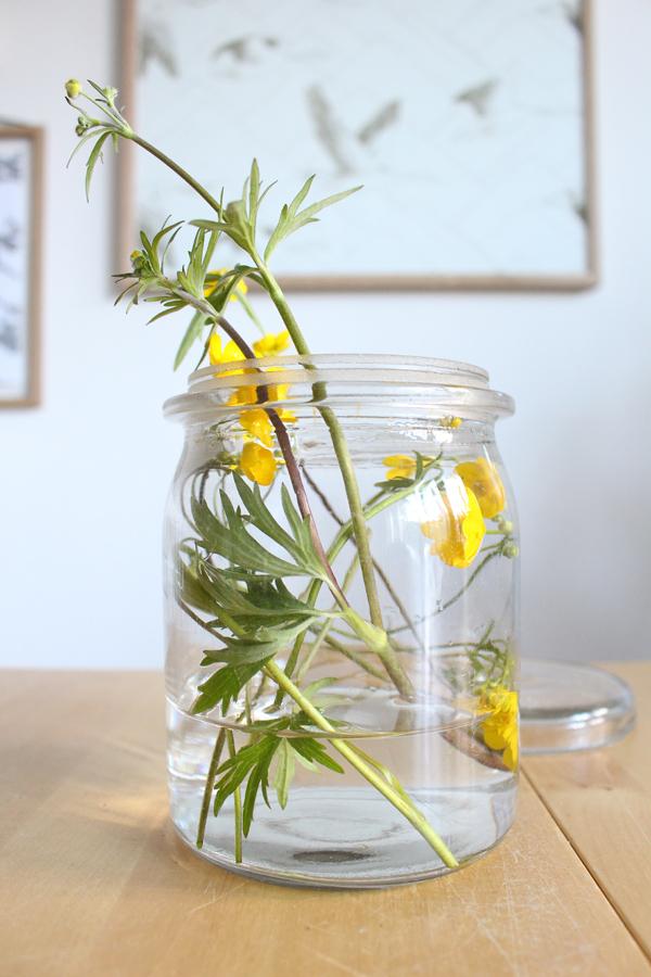 photography - buttercup - Sandra Meier - Accessorize your Home