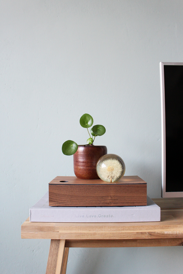 Houten opbergdoos CubiWood met een pilae stekje op een houten bank tegen een groene muur.