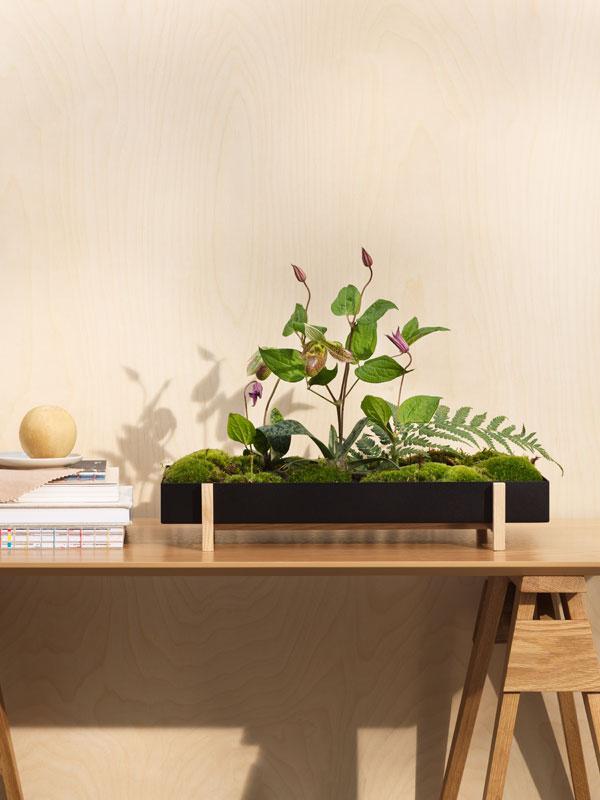 Minimalistische plantenbak van zwart metaal en lichthouten onderstel gevuld met mos en clematis - via Accessorize your Home