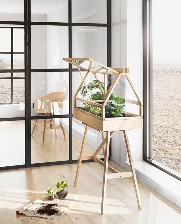Lichthouten kweekkas op poten in een zonovergoten kamer - via Accessorize your Home