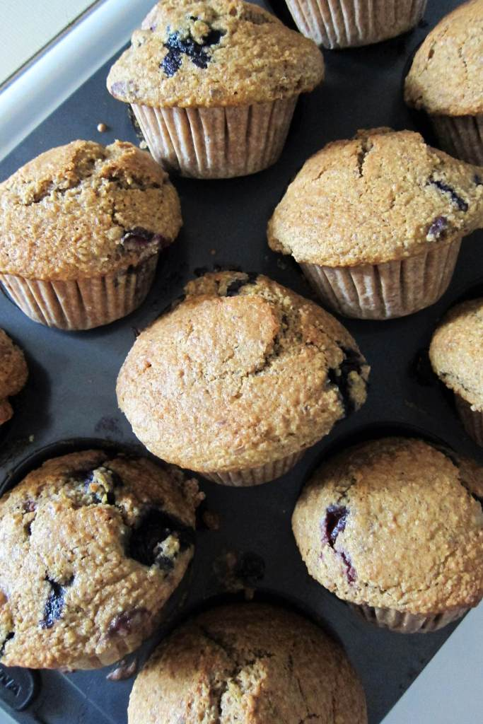 Blueberry Bran Spelt Flour Muffins | Accidental Artisan