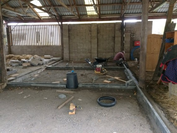 Barn floor laid / Cattle winter quarters / Tup out - The ...