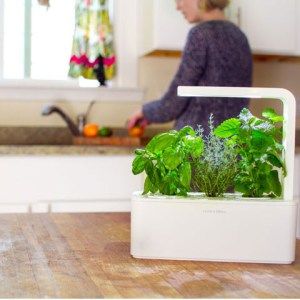 Smart Herb Garden - Idee Regalo Natale 2013 per Foodies - AccidiosaV