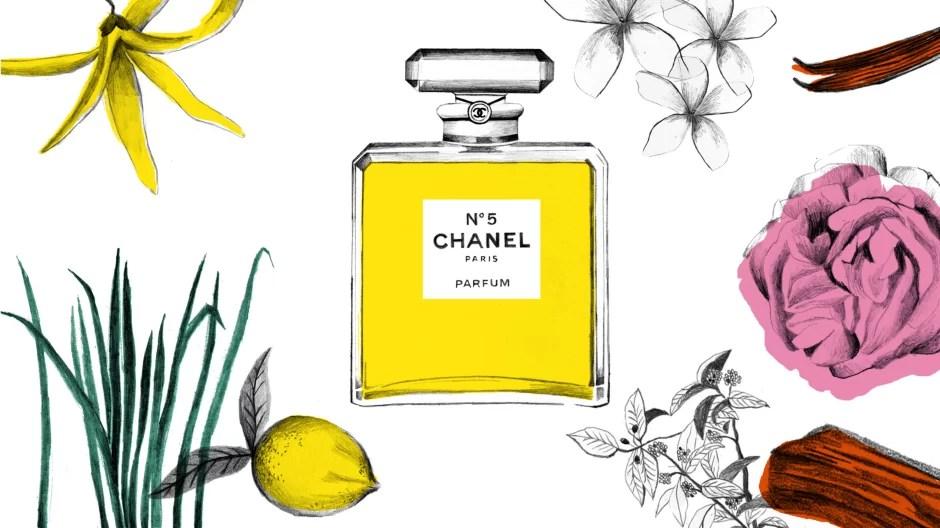 Illustrazione profumo Chanel N 5 - Note olfattive