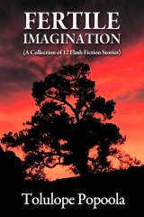 Fertile Imagination by Tolulope Popoola