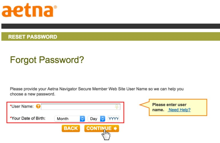 Aetna reset password