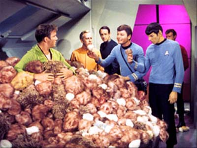 Product Mangers Can Create New Products Using Company Data - But Beware Of Having Them Multiply Like Tribbles!