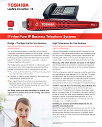 IPedge_Brochure-1