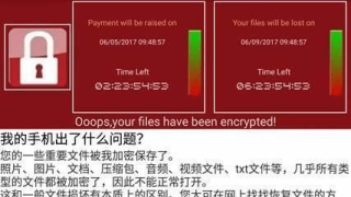 wannacry china