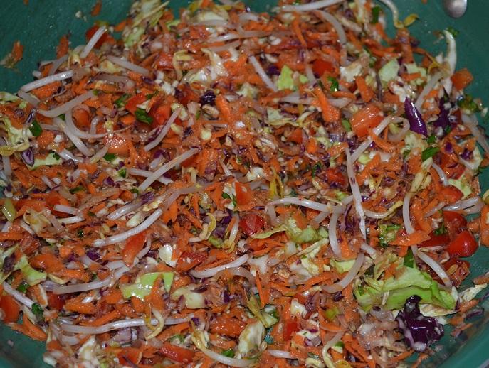 vegetarian spring rolls recipe1