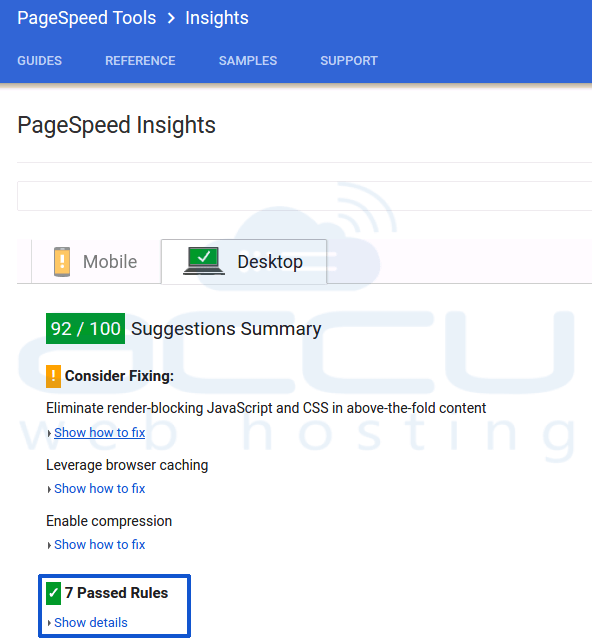 Google Page Speed Insight Score After Optimizing the Images
