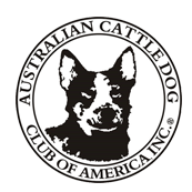 AKC – Australian Cattle Dog Club of America