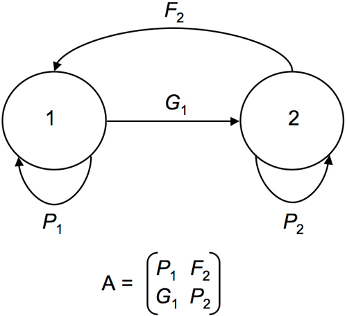 bird life cycle diagram two switch light circuit fig 2 graph for the stage classified model and corresponding population projection matrix least auklets aethia pusilla where p1