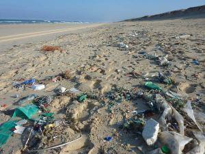 Nettoyage des plages - ACE -  Trash'Challenge à l'ACE : Le mois du grand nettoyage