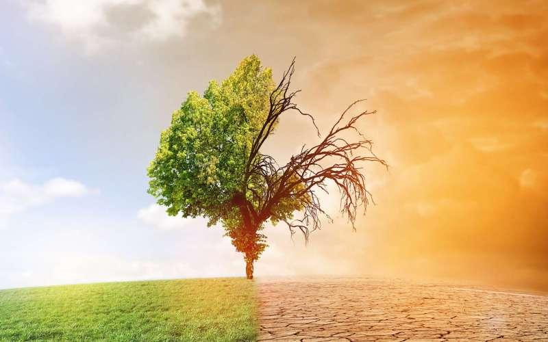 facb36e630_106000_consequences-changements-climatiques
