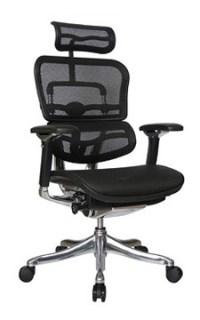 Ergohuman V2 Chair High Back with Black Frame and Mesh