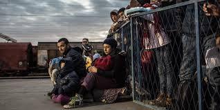 Razões e desafios: Por que razão as pessoas migram?