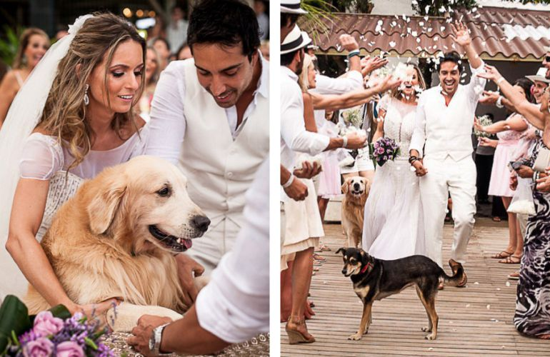 Casamento Pets