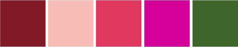 Paleta de Cores marsala e rosa chá
