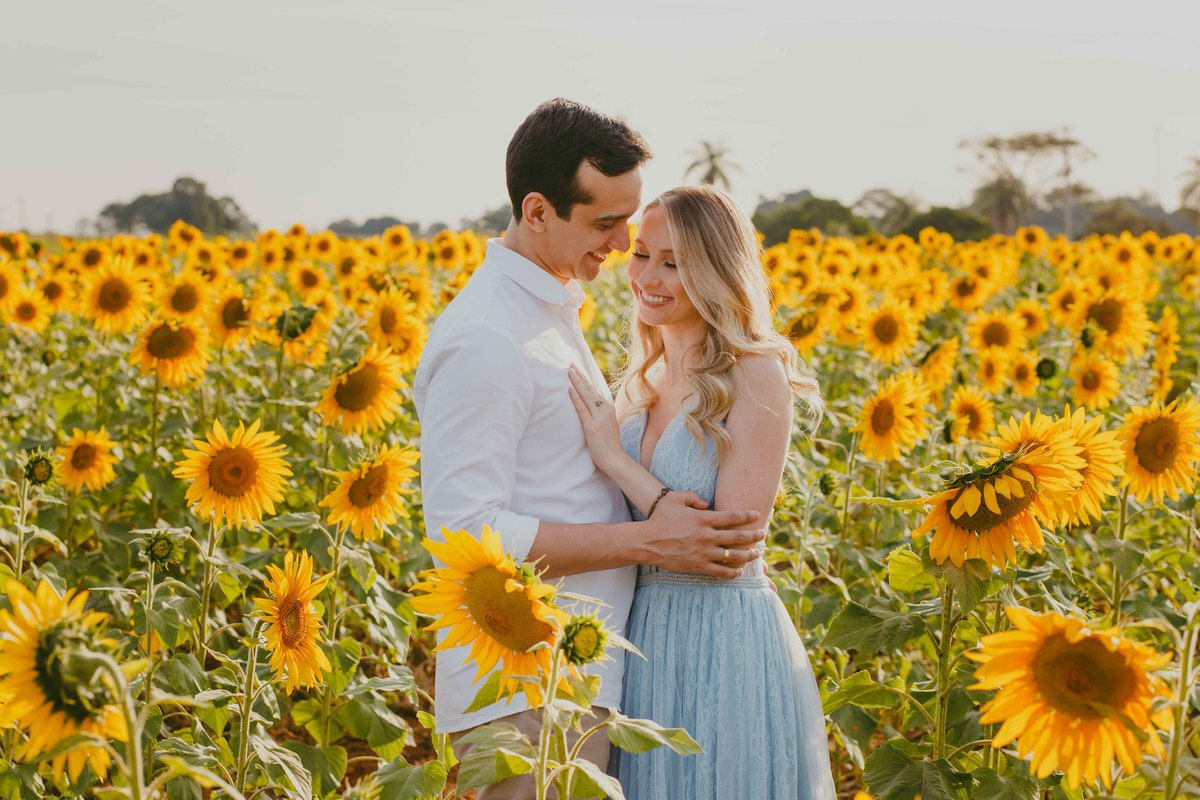 destinos românticos para passar o dia dos namorados: Holambra