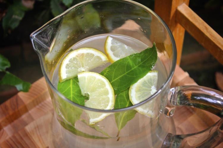 Bevanda rinfrescante al profumo di alloro
