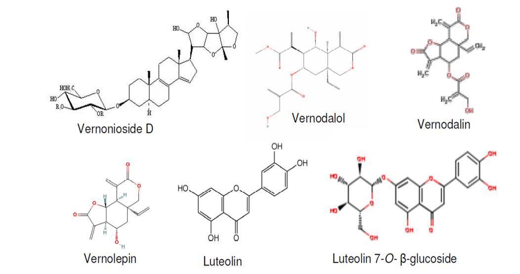 Estructura química de algunos fitocompuestos de V amygdalina (créditos Ijeh and Ejike 2011)