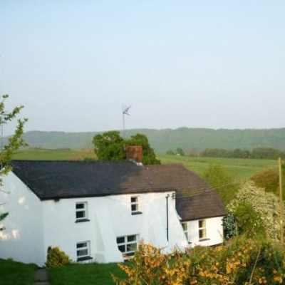 Bat Survey, Llanhenock, near Caerleon, Monmouthshire