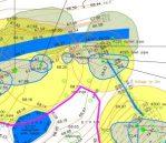 BS 5837 tree survey