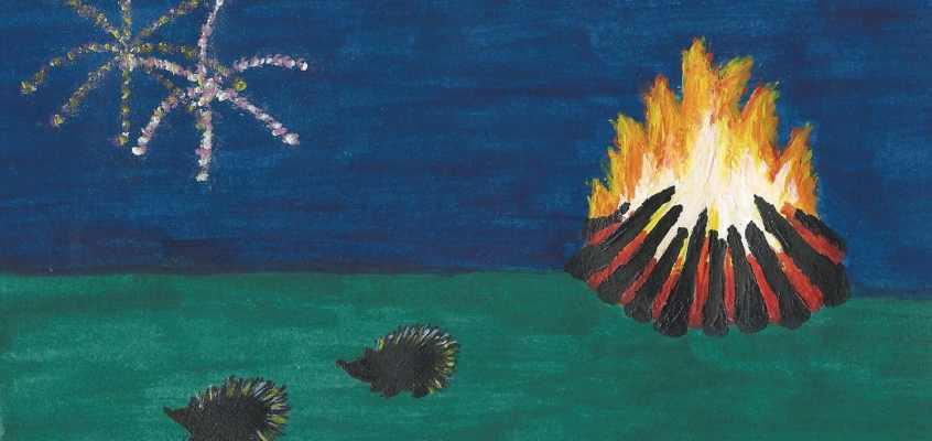 Hedgehogs On Bonfire Night