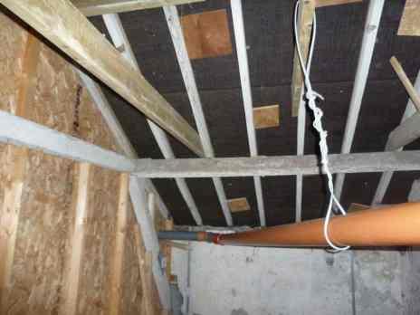 Internal View of Bat Loft