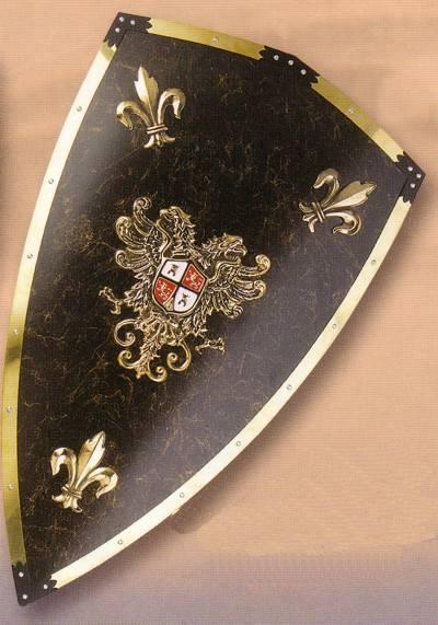 Charles v deluxe shield Medieval shield