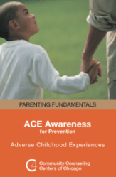 ACE Awareness brochure