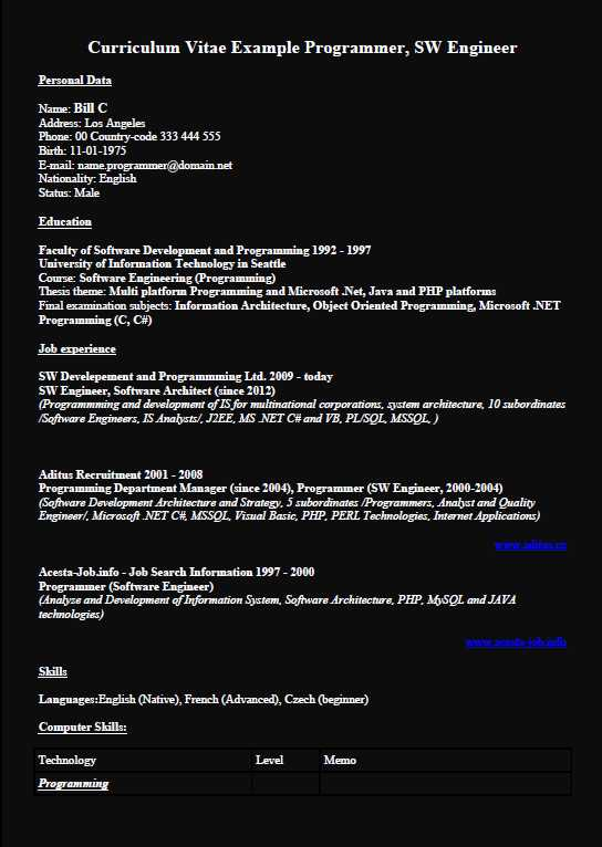 Programmer SW Developer CV Example  Black Background Color