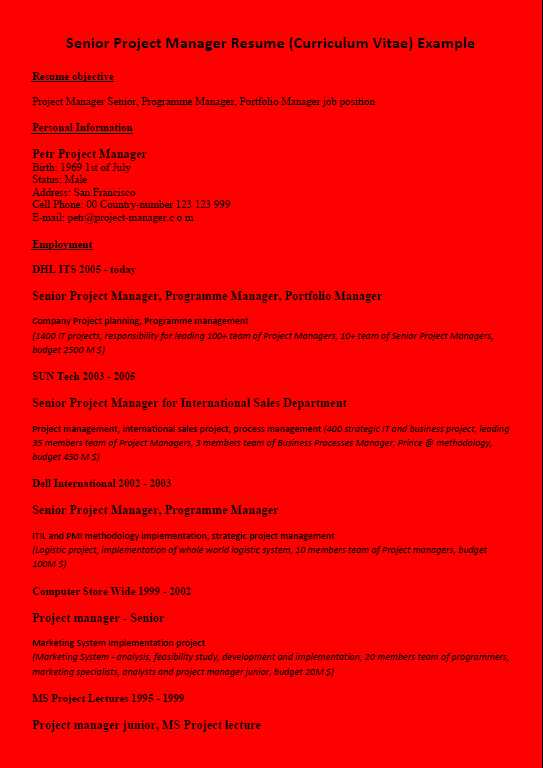 Resume CV Example Project Manager Red Background Color