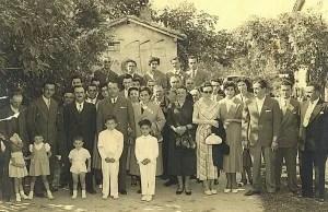 Family group V, Balsamic vinegar of Modena